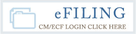 U.S. Federal Court District of Kansas E-filing